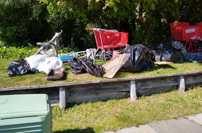 trash collected by Crew 7, including 3 shopping carts and a baby stroller
